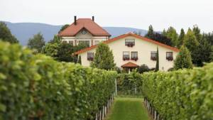 Villa Hochdörffer Landau Nussdorf Heiraten